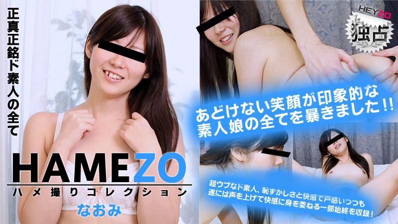 Heyzo 0017 HAMEZO~ハメ撮りコレクション~ vol.2