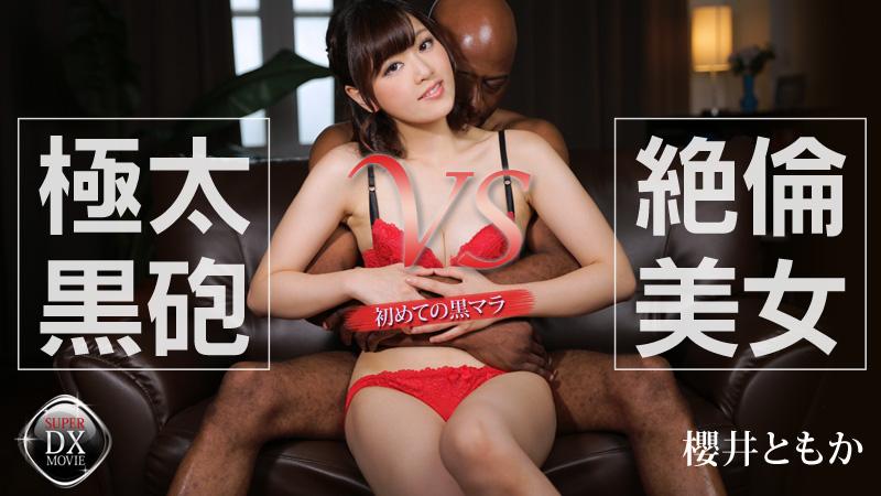 極太黒砲 VS 絶倫美女~初めての黒マラ~ 櫻井ともか