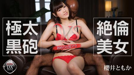 極太黒砲 VS 絶倫美女〜初めての黒マラ〜